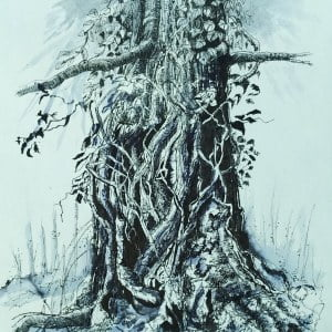 Ivy clad oak 5, limited edition Giclee print, large  framed