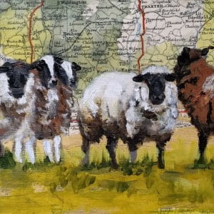 framed sheep 2